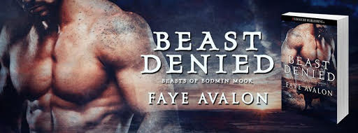 Faye Avalon Beast Denied Banner